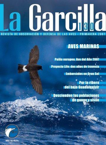 Artículo - SEO/BirdLife