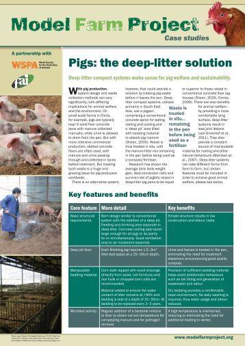 Deep litter for pigs - WSPA