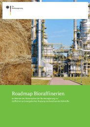 Roadmap Bioraffinerie