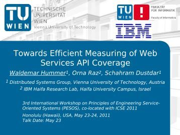 Towards Efficient Measuring of Web Services API Coverage - S-Cube