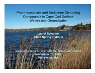 Pharmaceuticals and Endocrine Disrupting Compounds in Cape ...