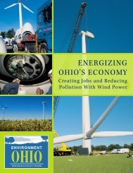 Download OH-Energizing-Ohios-Economy.pdf - Frontier Group