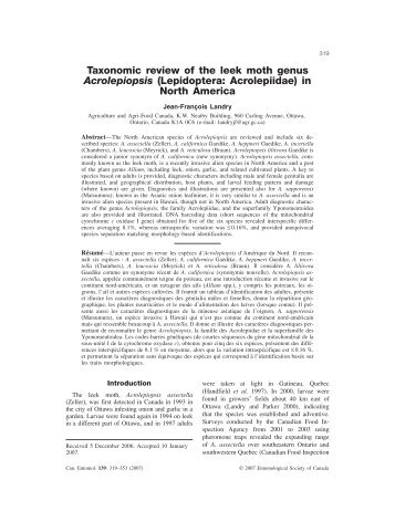 Taxonomic review of the leek moth genus ... - Bolinfonet.org