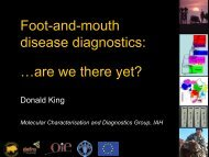Foot-and-mouth disease diagnostics: …are we there yet?