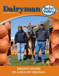 Brown SwiSS in a Sea of orange - Swiss Valley Farms