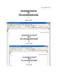 Att använda Word xp för PM- och uppsatsskrivning