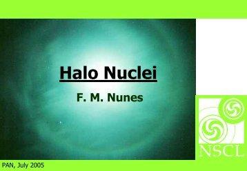 Halo Nuclei