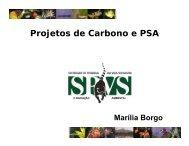Projetos de Carbono e PSA