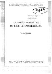 LA FAUNE TERRESTRE - Macrostomorpha