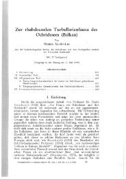 Zur rhabdocoelen Turbellarienfauna des Ochridasees· (Balkan)