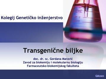 Transgenične biljke