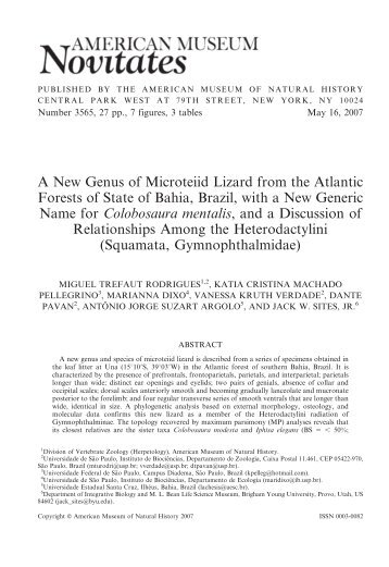 A New Genus of Microteiid Lizard from the Atlantic Forests ... - BioOne