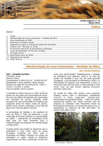 2012 Anilha Digital C Godinho.pdf - icaam - Universidade de Évora