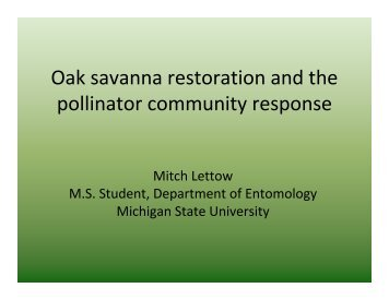 Oak savanna restoration and the pollinator community response