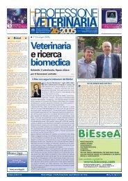 n. 26, dal 11 al 17 luglio 2005 - Anmvi