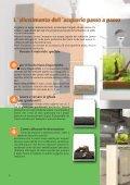 Il fascino degli acquari Nano - Dennerle - Page 4