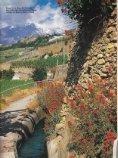 Winzer im Wallis - Winedine - Seite 5
