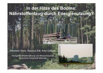 In der Hitze des Booms: Nährstoffentzug durch Energienutzung?