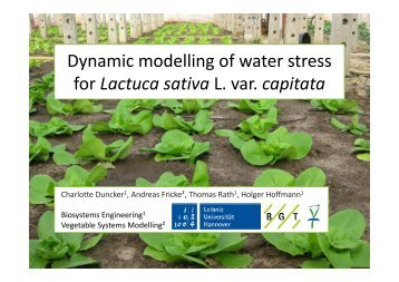 7. Dynamic modelling of water stress for Lactuca sativa L. var ... - Inra
