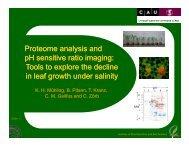 Proteome analysis and pH sensitive ratio ... - IPNC Home Page