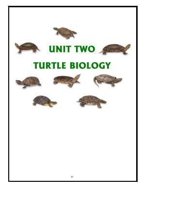 UNIT TWO: TURTLE BIOLOGY - Toronto Zoo