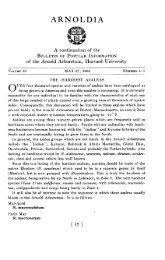 The Hardiest Azaleas - Arnoldia - Harvard University