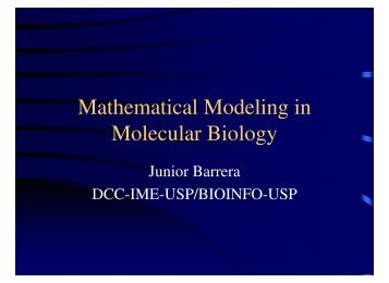 Mathematical Modeling in Molecular Biology - Vision at IME-USP