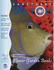 Flower Garden Banks - National Marine Sanctuaries - NOAA