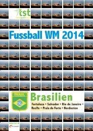 Fussball WM2014 Brasilien