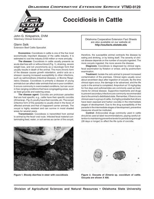 Coccidiosis in Cattle - OSU Fact Sheets - Oklahoma State
