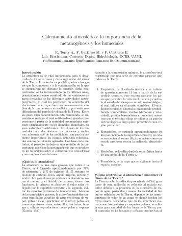 la importancia de la metanogénesis y los humedales.