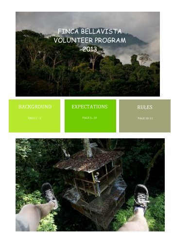 FINCA BELLAVISTA VOLUNTEER PROGRAM 2013