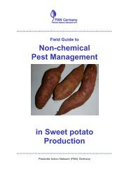 Field Guide to Non-chemical Pest Management in Sweet potato ...