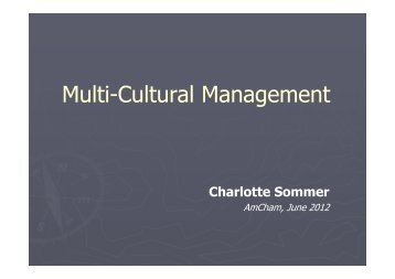 AmCham - Multi-Cultural Management