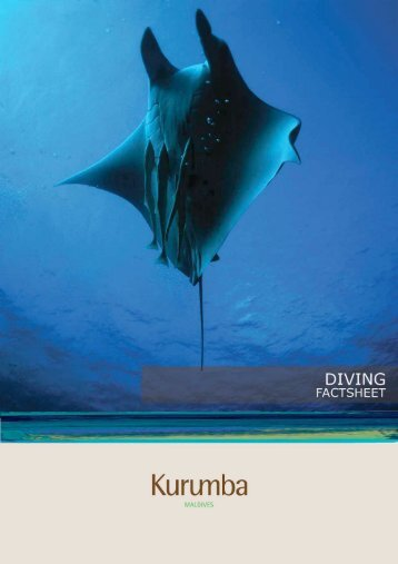 Diving Factsheet - Kurumba Maldives