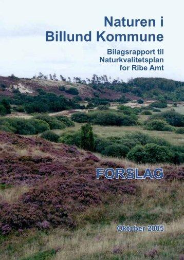 Naturkvalitetsplan - Billund Kommune