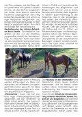 Termine - Bürgerverein Herdern - Seite 4