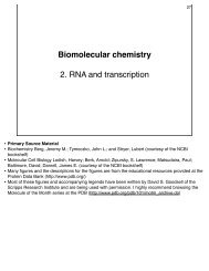 Biomolecular chemistry 2. RNA and transcription - Department of ...