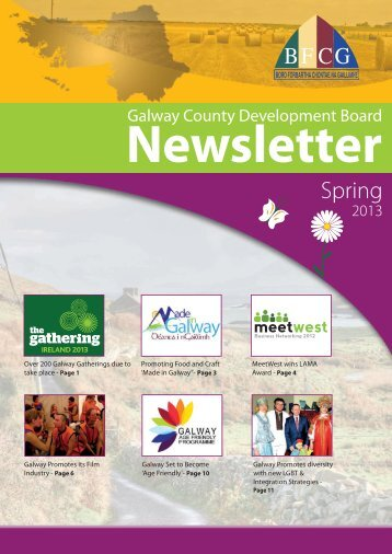 CDB Newsletter Spring 2013 - Galway County Council