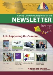 CDB Newsletter Summer 2011 - Galway County Council