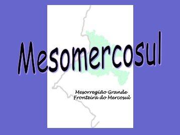 Mesorregião Grande Fronteira do Mercosul