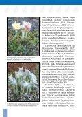 Hauhon luonto-opas (pdf 3,7 Mt) - Hämeenlinna - Page 6