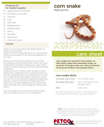 corn snake care sheet - Petco