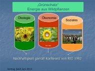 Wildpflanzen - Ministerium für Klimaschutz, Umwelt, Landwirtschaft ...