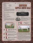 Cowtown Cattle Drive Sale - American International Charolais ... - Page 2