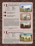 Cowtown Cattle Drive Sale - American International Charolais ... - Page 3