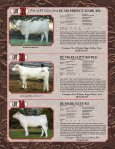 Cowtown Cattle Drive Sale - American International Charolais ... - Page 6