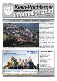 Ausgabe 02/2013 herunterladen - NetTeam Internet-Lösungen