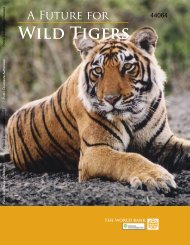 A future for wild tigers - Smithsonian Institution