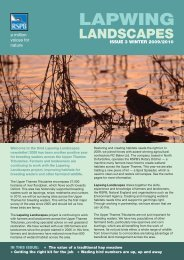 Lapwing Landscapes newsletter - RSPB